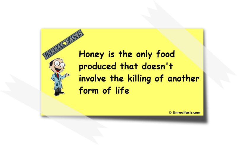 honey is the only food