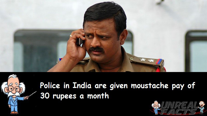 Indian Police Moustache