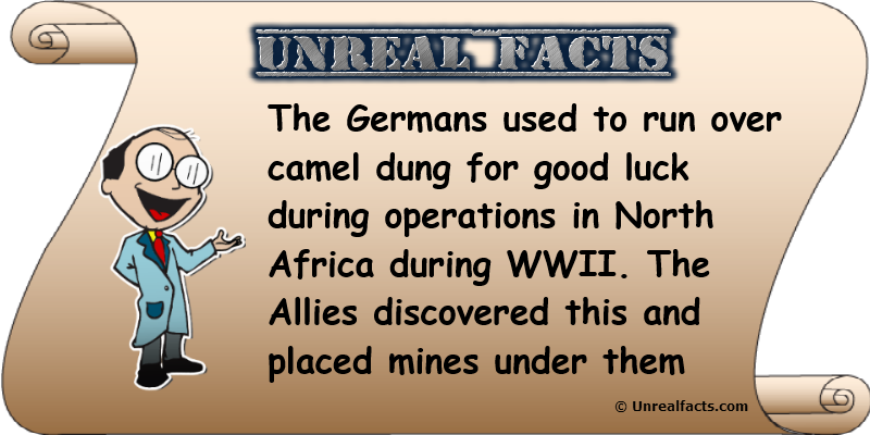 german tank drivers camel dung