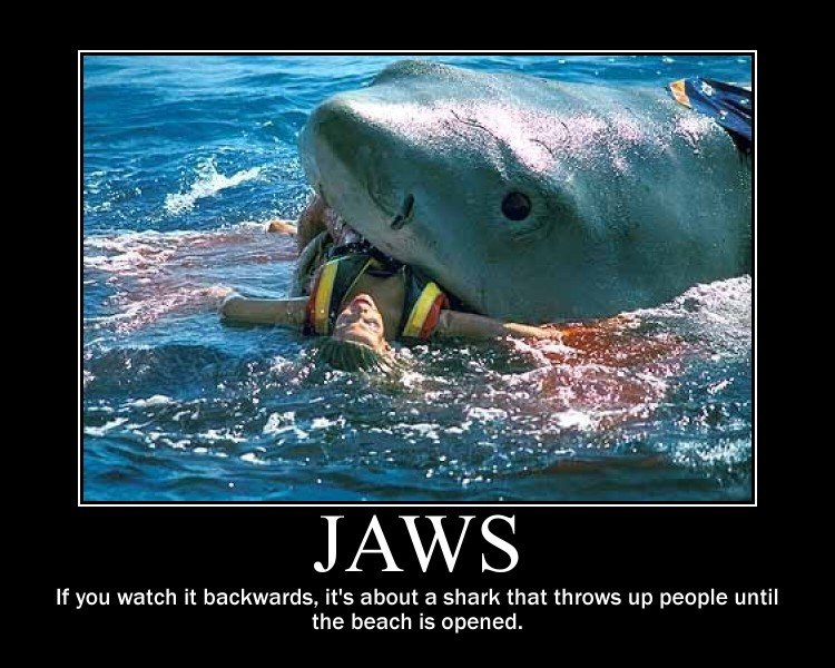 shark in jaws name
