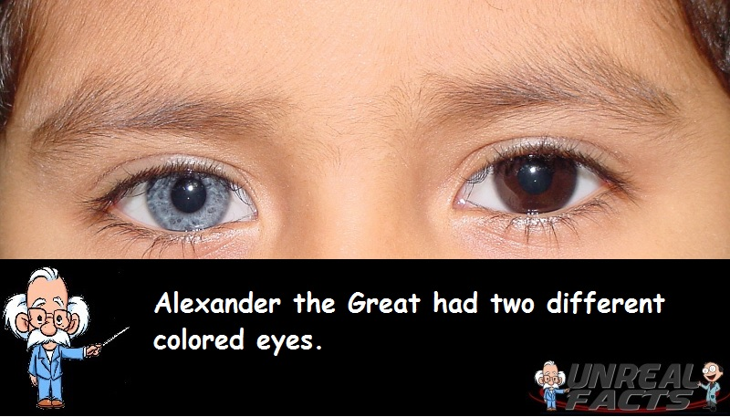Alexander the Great Eye Color