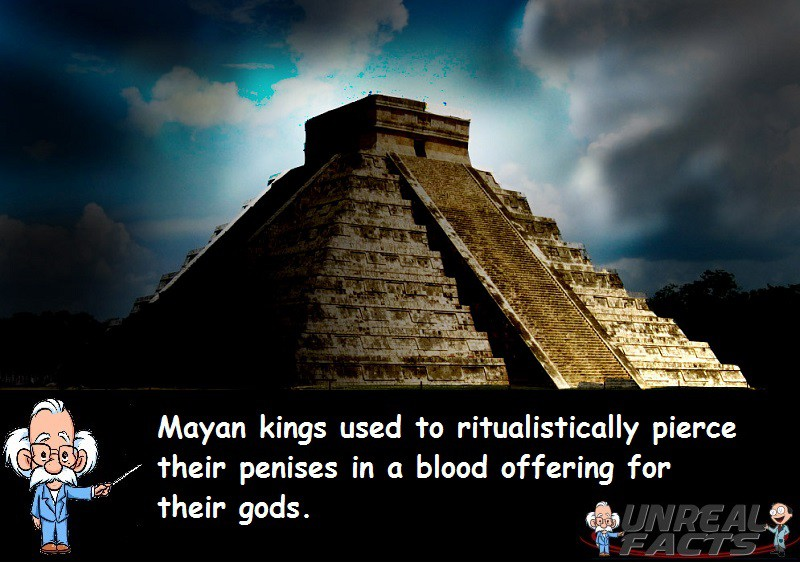 Mayan Kings Pierces